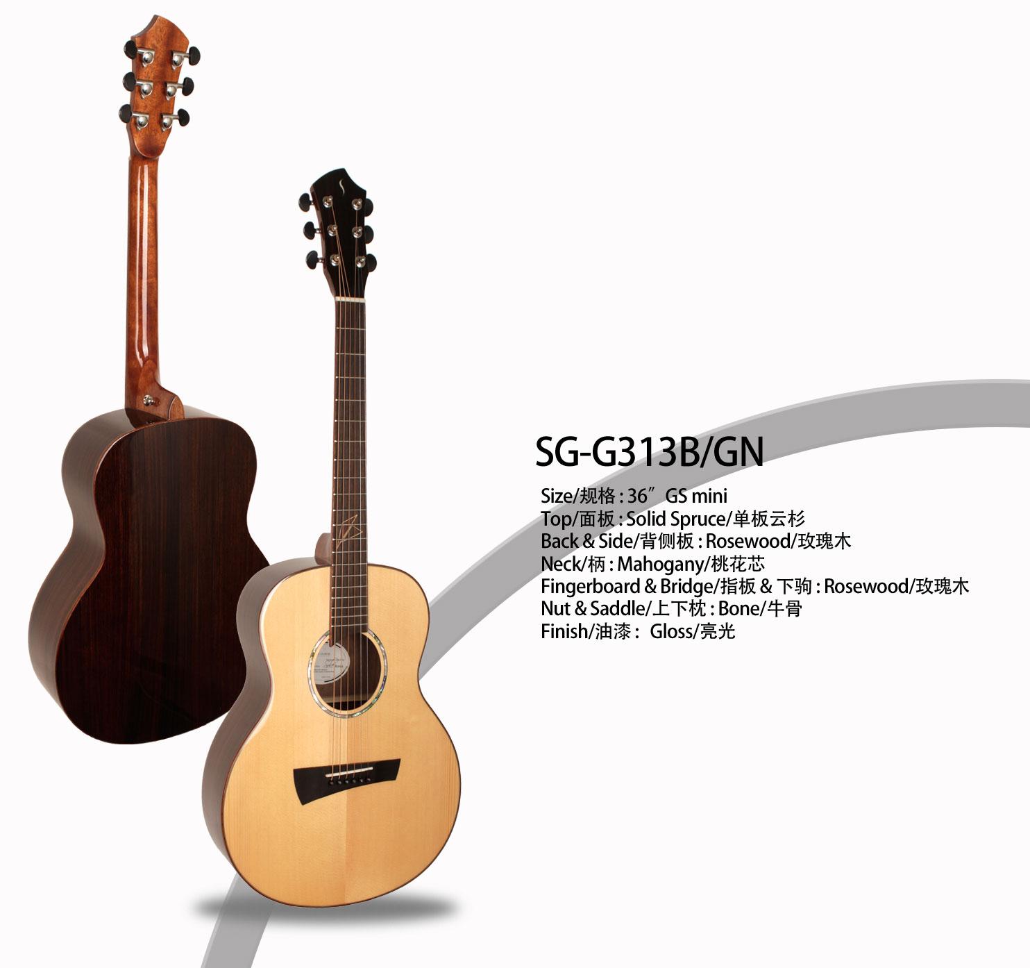 g313bgn